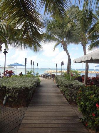 The Landings St. Lucia : Beach Club