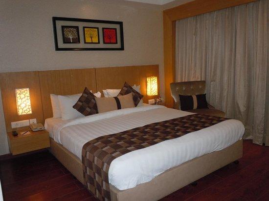 Jameson Inn Shiraz: Room 201