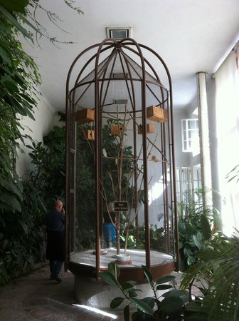 Altstadthotel Kasererbräu: Delightful summerhouse in the grounds of Mirrabell gardens