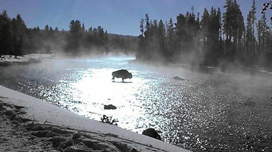 Two Top Snowmobile Rental West Yellowstone 2019 All You Need To Know Before You Go With