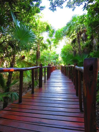 Grand Palladium Kantenah Resort and Spa: Jungle walkway