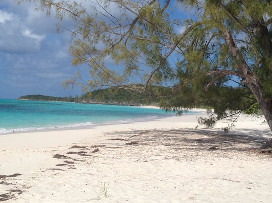 Tail Winds Resort: Tailwinds beach