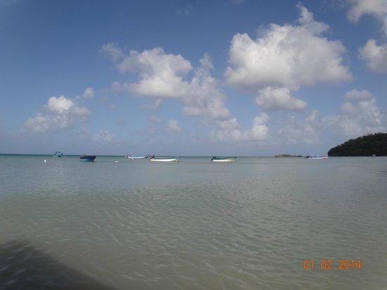 Sirius Hotel & Dive Center: Praia em frente ao hotel