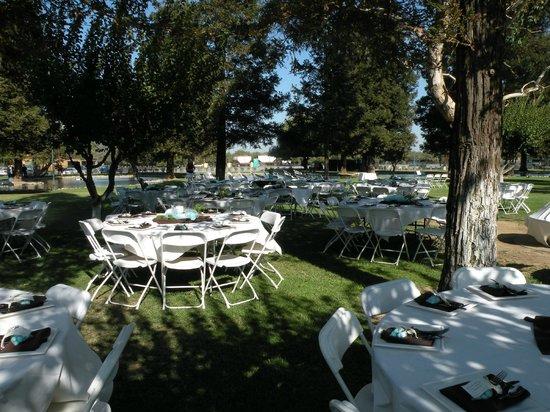 The Fruit Yard : Lake Area Table Arrangement