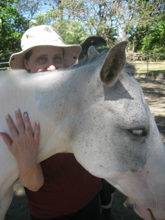 Casagua Horses Tours: Connecting with 'sweet pea' (aka Miss Tica)