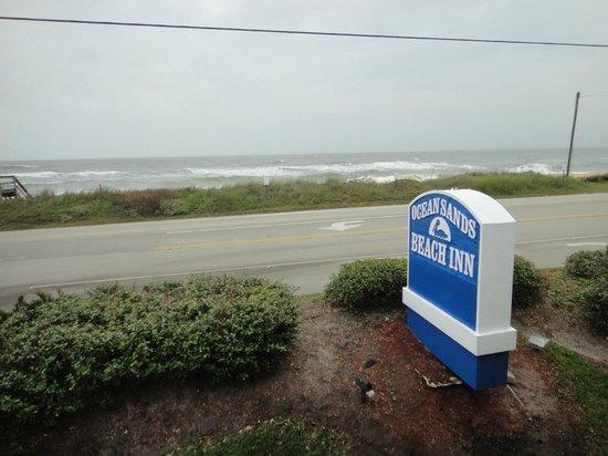 Ocean Sands Beach Inn : esses arbustos atrapalham a vista para o mar dos quartos inferiores de frente pro mar