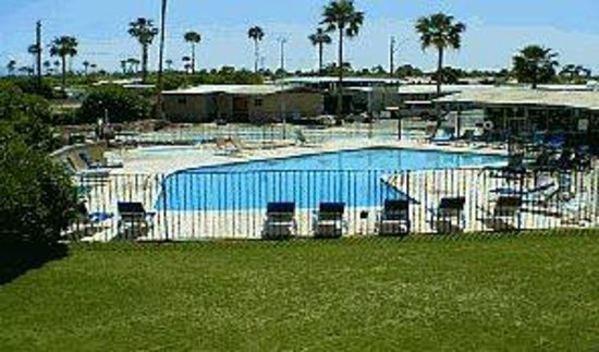 Desert Grove Inn and Suites: our pool