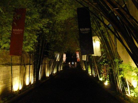 Tamarind Village : Enchanting entrance at night