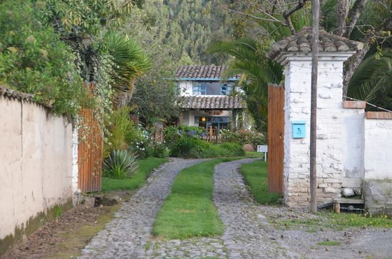 Las Palmeras Inn: Drive into Hacienda Las Palmeras