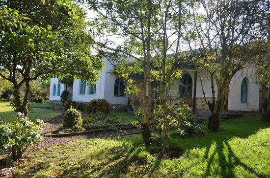 Las Palmeras Inn: One of the casas
