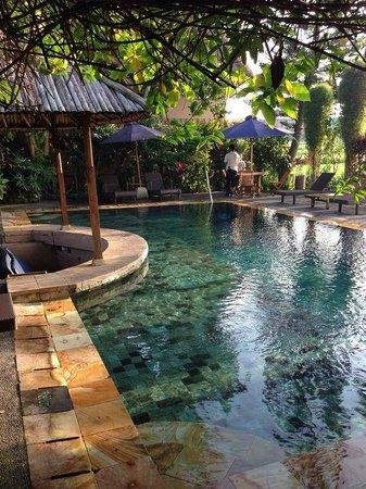 public swimming pool picture of tegal sari ubud tripadvisor