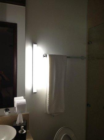 Hotel Santo Toribio: restroom