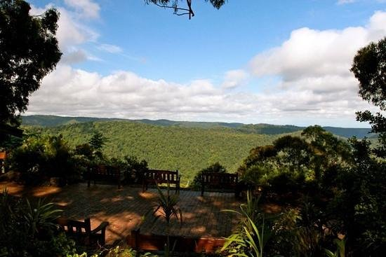 Binna Burra Mountain Lodge: Look out next to resturant