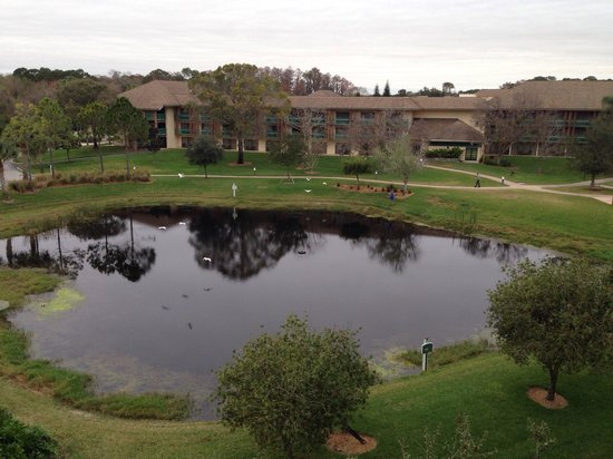 Shades of Green Hotel : Our view from our room. You could hear the frogs from your balcony!