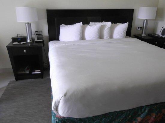 Radisson Grenada Beach Resort: King Std Garden Room