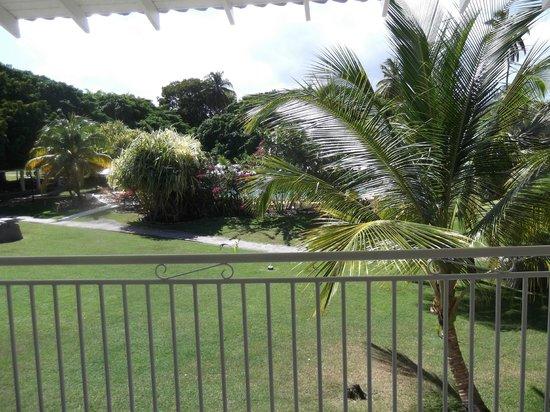 Radisson Grenada Beach Resort: view from Hotel Room - Garden View