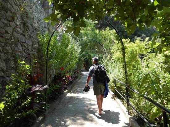 La Tonnarella: On the walk between the beach & the elevator