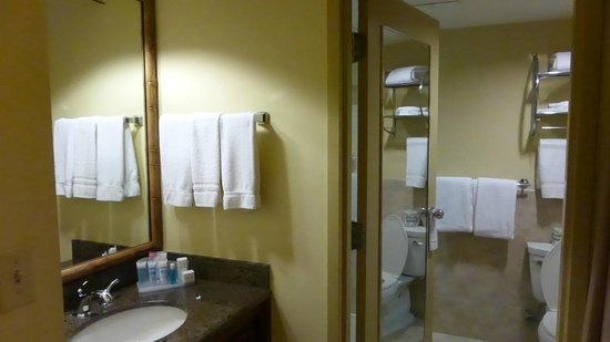 Holiday Inn Tampa Westshore: Clean and roomy.
