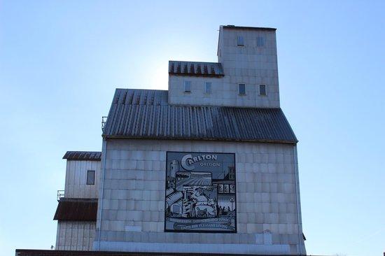 Willamette Valley: Carleton, OR