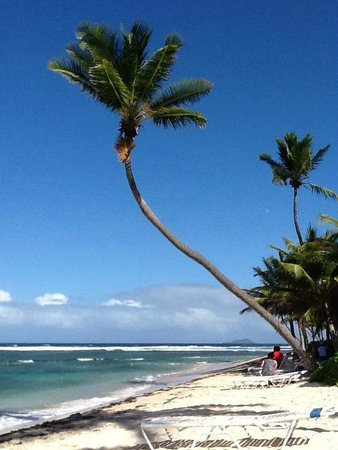 The Palms at Pelican Cove: walking to the sand