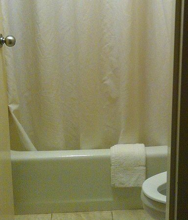 Econo Lodge Mayport: Bathroom