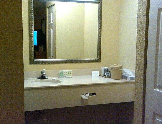 Econo Lodge Mayport: Sink area