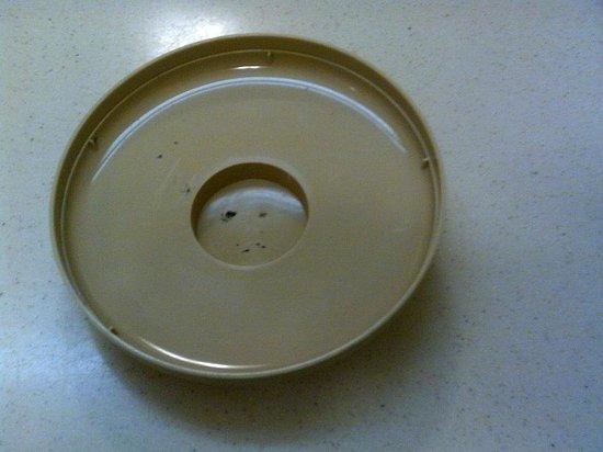 Econo Lodge Mayport: Mildew on ice bucket lid