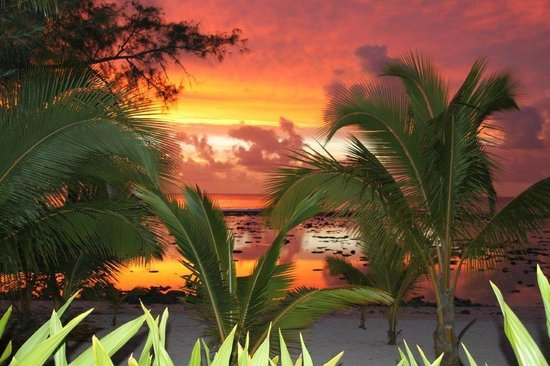 Magic Reef Bungalows: Sunset from Absolute Beachfront Bungalow