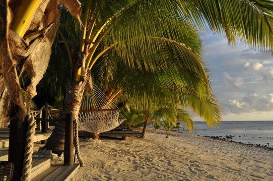 Magic Reef Bungalows: Beach