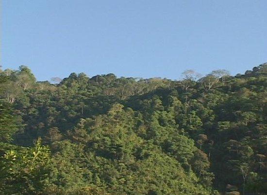 La Purruja Lodge: Surrounding hills are gorgeous