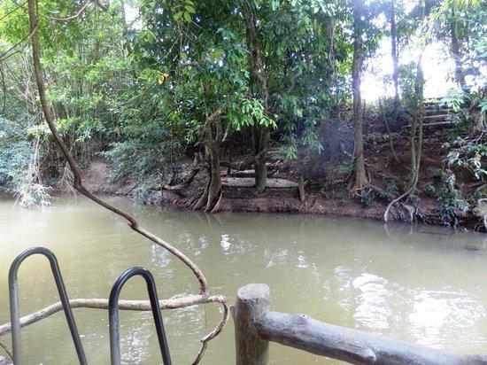 Namtok Ron (Hot Spring Waterfall ) - Khlong Thom: Hot Spring Waterfall