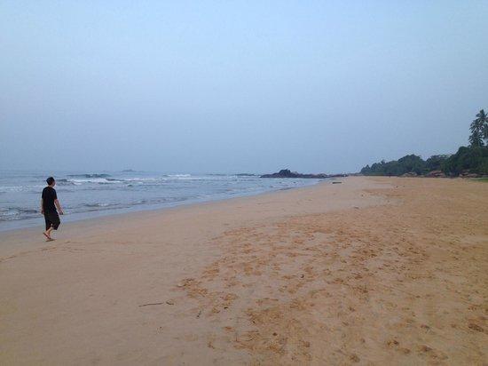 Chitra Ayurveda: quiet beach