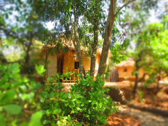 Banyan Tree Yoga Goa: Grounds and Rooms