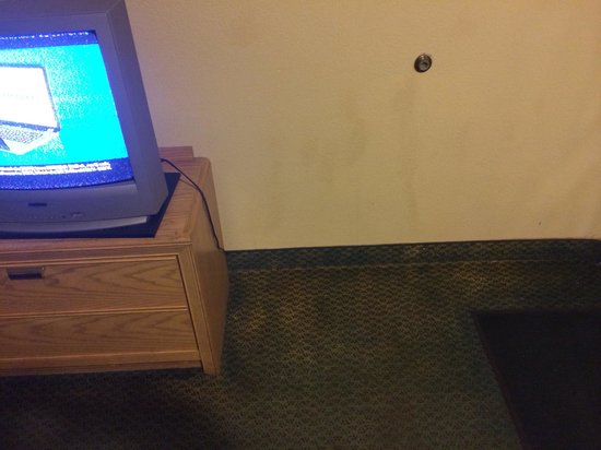 Quality Inn East : TV and carpet