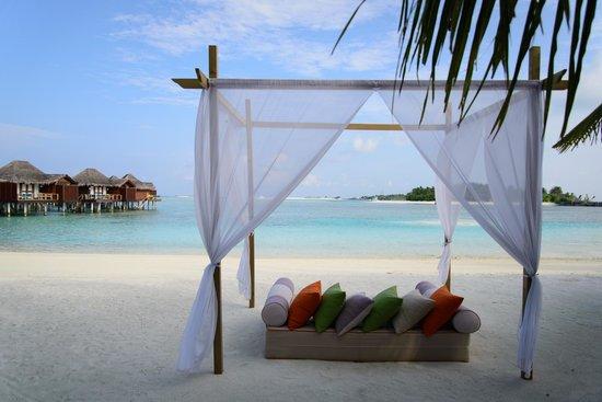 Anantara VeliMaldivesResort: Cabana on the beach.