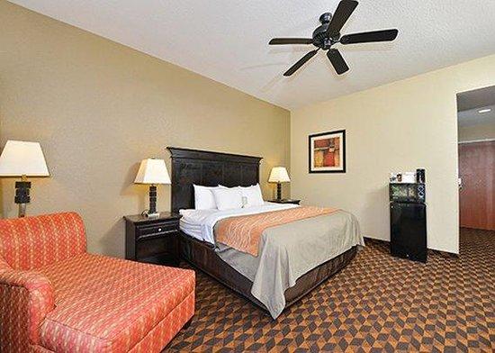 Comfort Inn & Suites: Handicap King Room