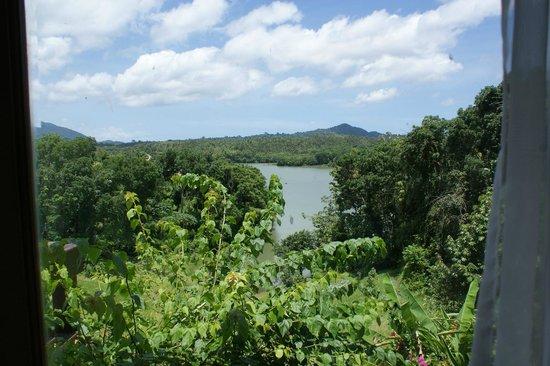 Taman Wana Villas and Spa : View