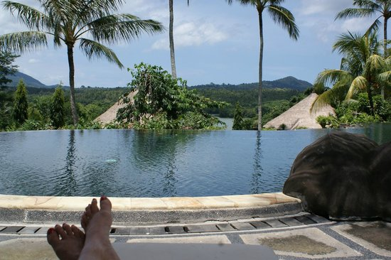 Taman Wana Villas and Spa : pool