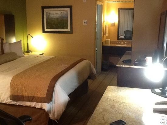 Wyndham Garden Oklahoma City Airport: overall view of a somewhat small king room