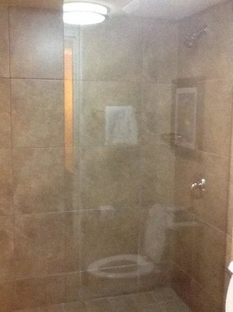 Wyndham Garden Oklahoma City Airport: walk in shower rather than a tub. yippee!