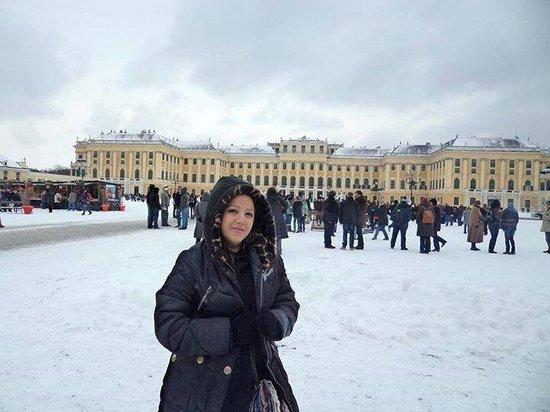 Schloss Schönbrunn: -4 grados y maravillada por la belleza.
