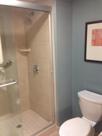 Hyatt Place Seattle/Downtown : Decent bathroom in room
