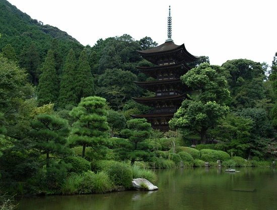 Ruriko Temple Five-Story Pagoda : 周囲との対比が美しいです