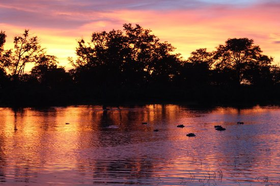 Great Plains Conservation Selinda Camp: Sundowner drinks at hippo pool
