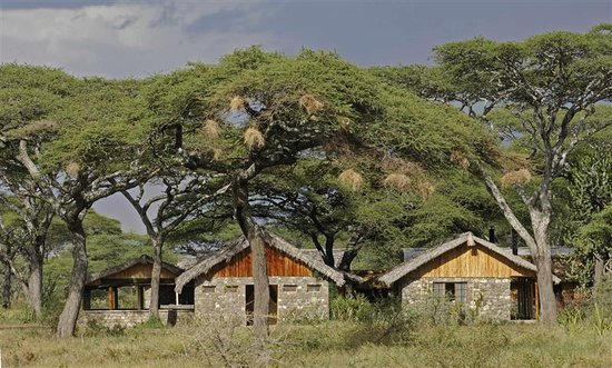 Ndutu Safari Lodge: getlstd_property_photo