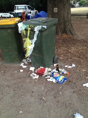 Lorne Foreshore Caravan Park: The bins!!! Disgusting, smelly & attracted unwanted wildlife!!