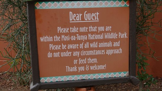 AVANI Victoria Falls Resort: Do not approach or feed the animals