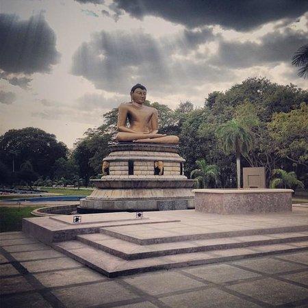 维哈马哈德维公园