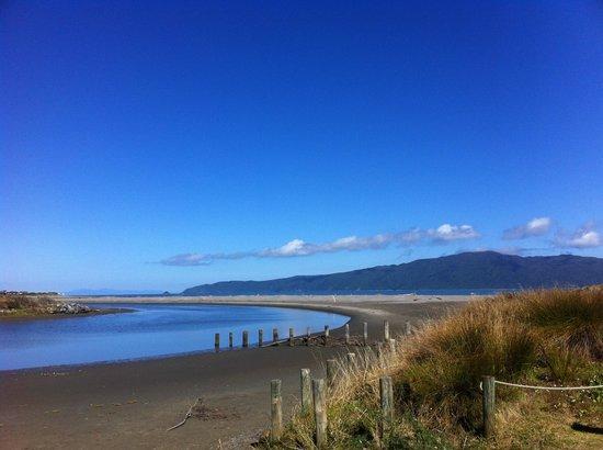Helen's Waikanae Beach B&B / Homestay: The Waikanae Estuary Scenic Reserve with Kapti Island in the distance