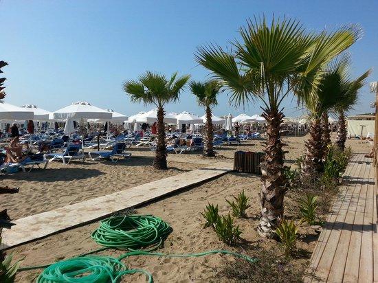 Dream World Resort: Private beach